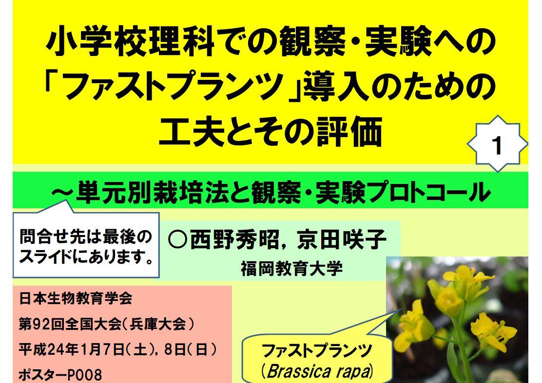 2012%20nishino%2001.JPG