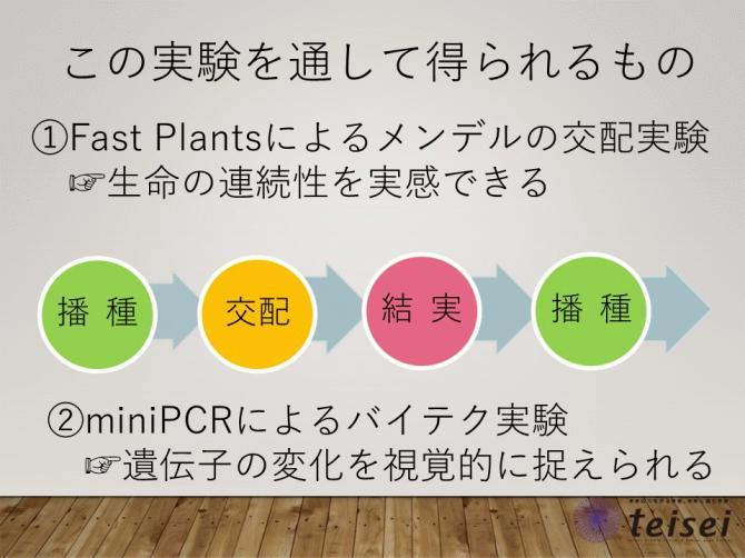 スライド16-0202001.JPG