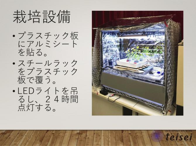 スライド17-0202001.JPG