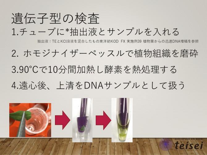 スライド22-0202001.JPG