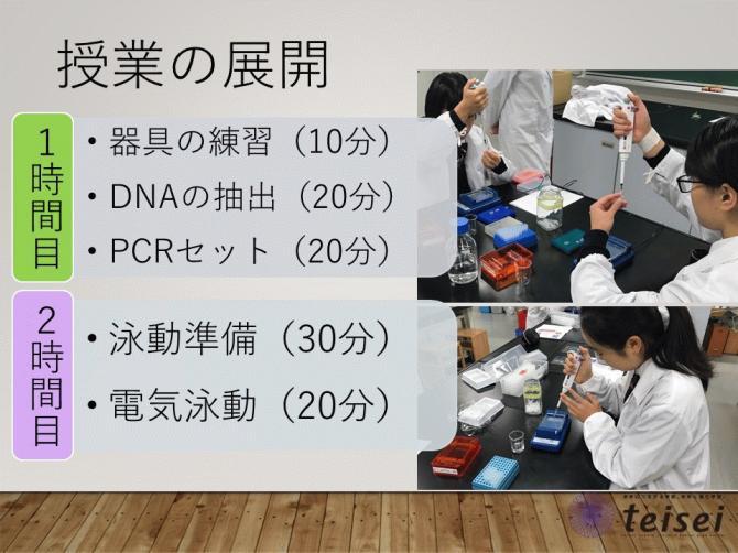スライド28-0202001.JPG
