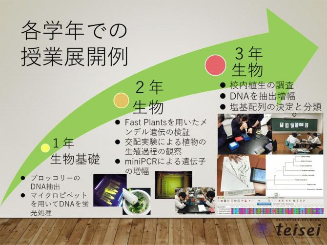 スライド32-0202001.JPG
