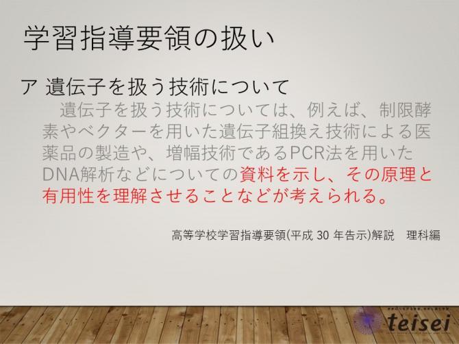 スライド8-0202001.JPG