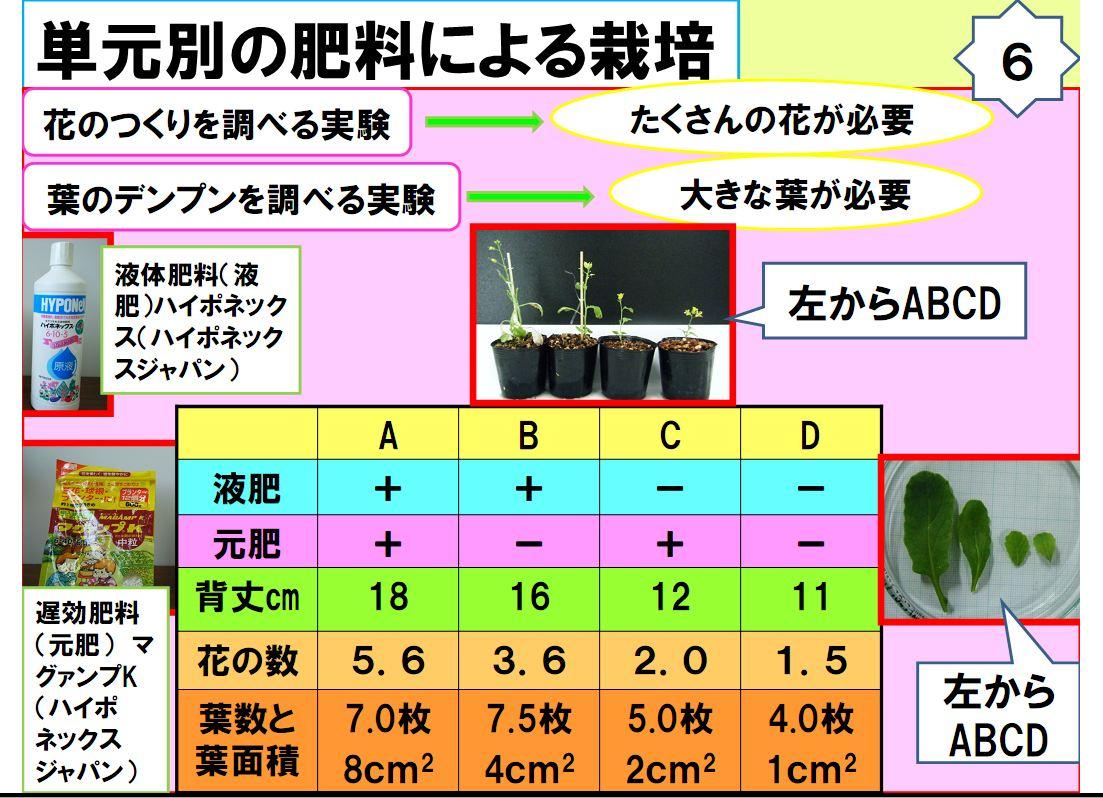 nishino07.JPG